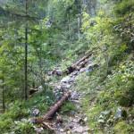 Der Felssturz ereignetet sich Funtensee zwischen St. Bartholomä und Schrainbachfall