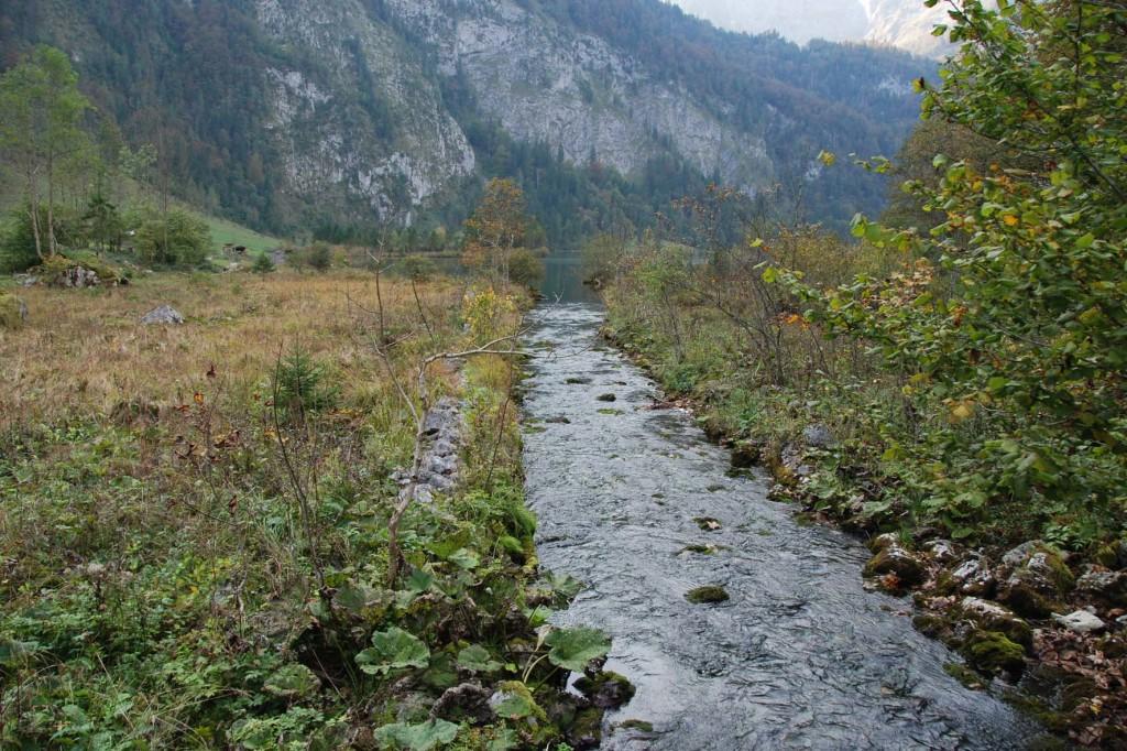 Für die Holztrift begradigt wurde der Saletbach schon Anfang des 19. Jahrhunderts.