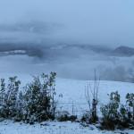 Schnee an der Alpenstraße