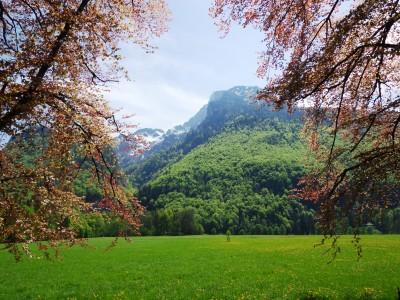 Blick auf den Untersberg von Glanegg aus