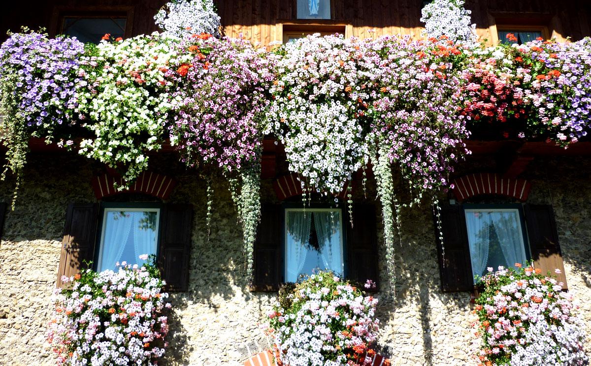 tv tipp g rten im berchtesgadener land im bayerischen fernsehen. Black Bedroom Furniture Sets. Home Design Ideas