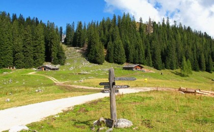 Moosenalm im Lattengebirge