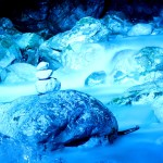 Steindaube blau