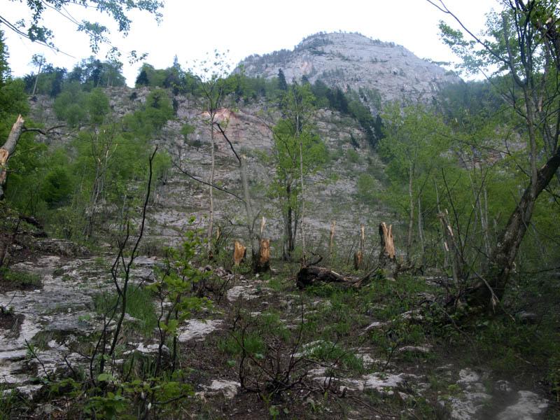 Tödlicher Bergunfall Gestern