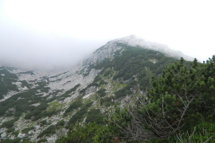 Hocheck im Nebel von der Gugl aus
