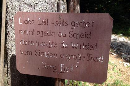 Schild am holzlagerplatz Steiner Alm