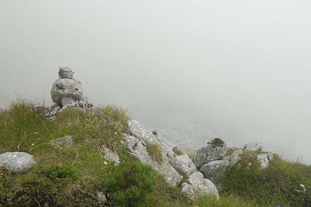 Steindaube zwischen Gugl und Watzmannhaus
