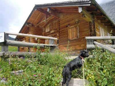 Stahlhaus-Susi vor der Oberjochalm