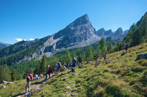Wander-Festival-Teilnehmer auf dem Weg zum Watzmann