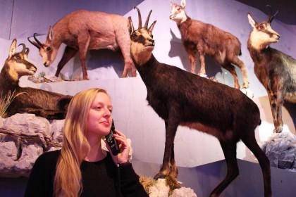 """Die Audioguides im Nationalparkzentrum """"Haus der Berge"""" verraten viel Wissenswertes über die Tiere und Pflanzen des Schutzgebiets."""