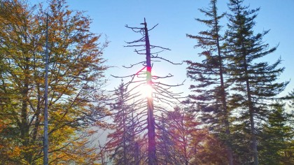 Die Sonne bricht sich ihren Weg