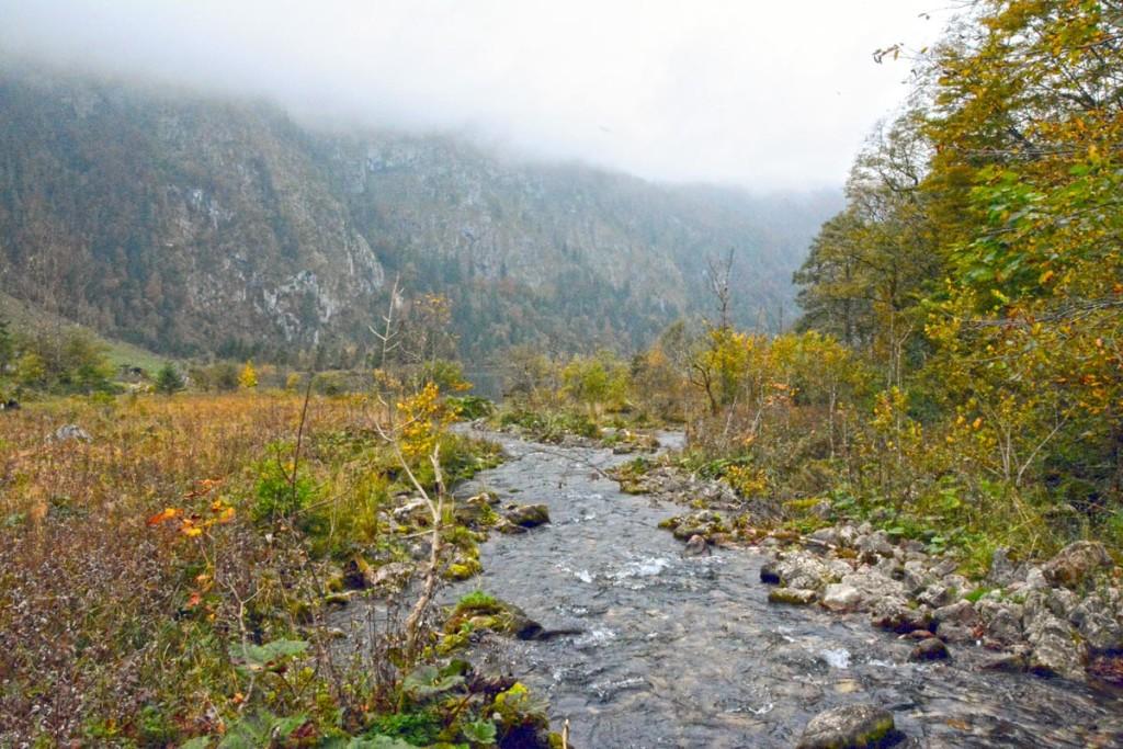 Der Saletbach zwischen Obersee und Königssee