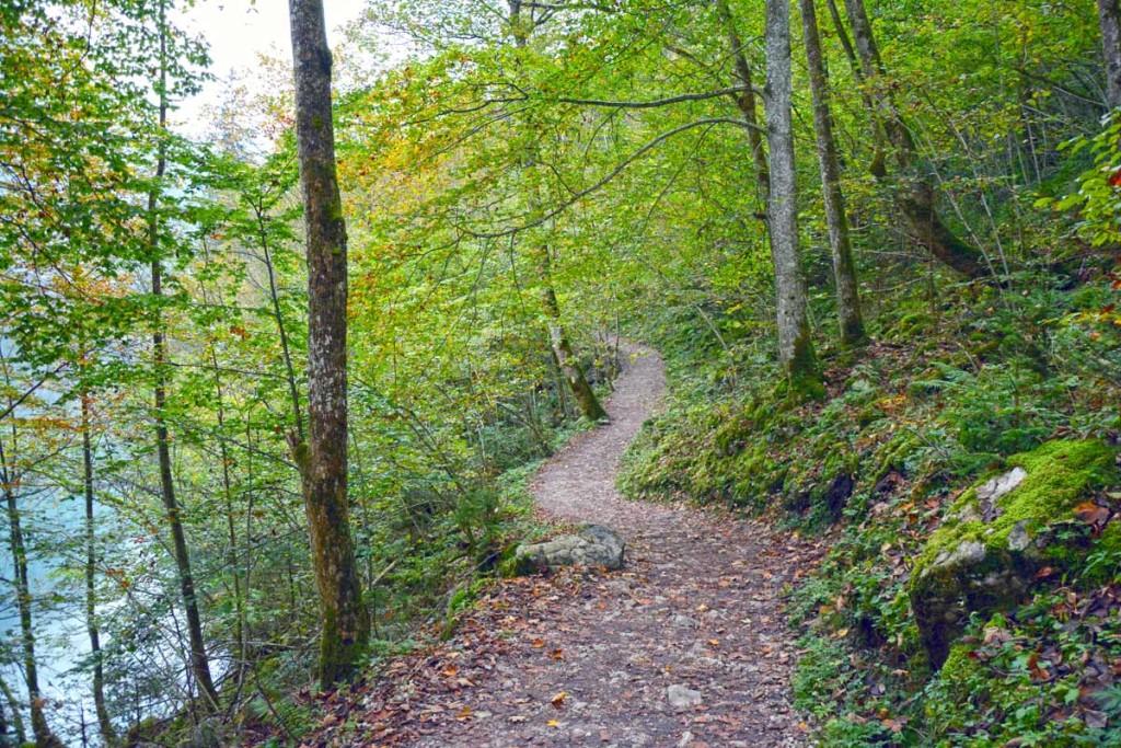 Wanderweg am Obersee