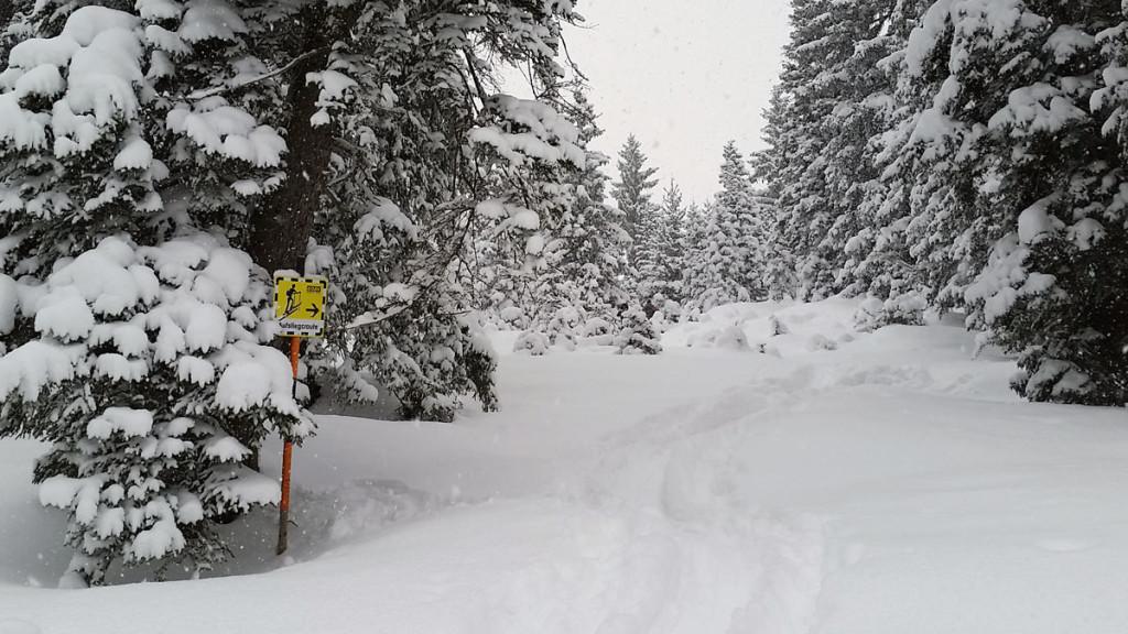 Skitouren Aufstiegsroute