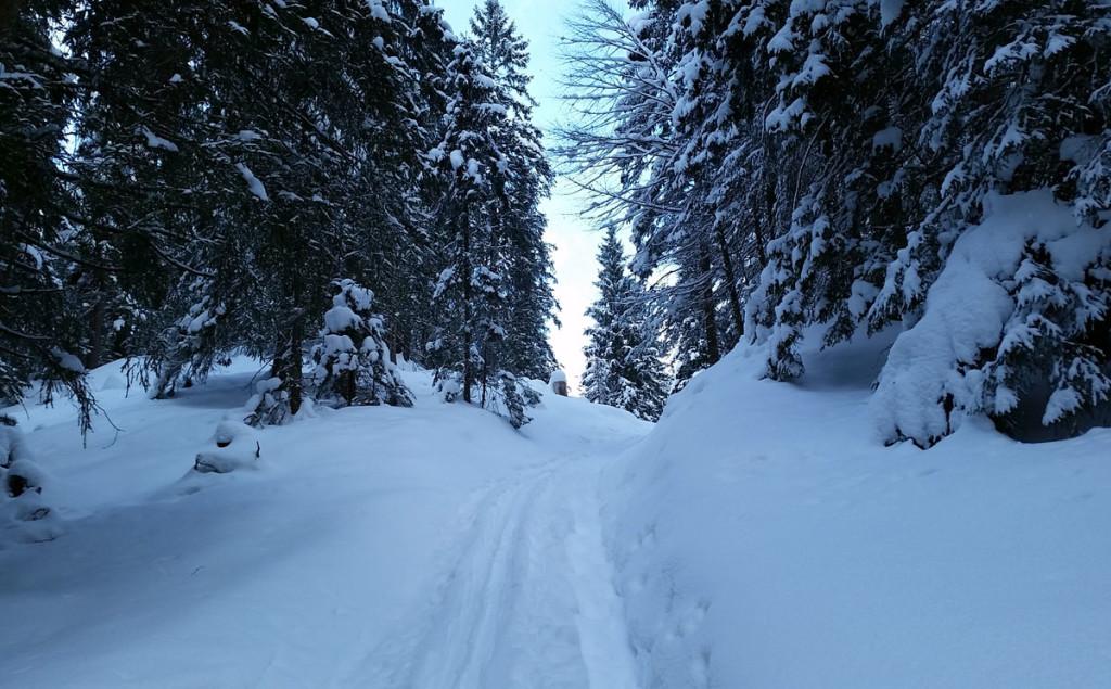 Skitouren-Aufstiegsspur am Hochschwarzeck