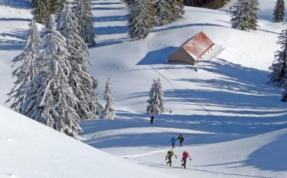 Skitour auf die Stoißer Alm © Dr. Georg Bayerle, BR