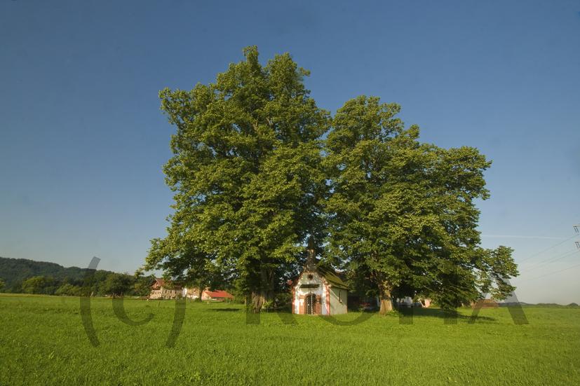 die Kapelle in Kleinrückstetten, Pfarrei Teisendorf, Berchtesgadener Land, Oberbayern