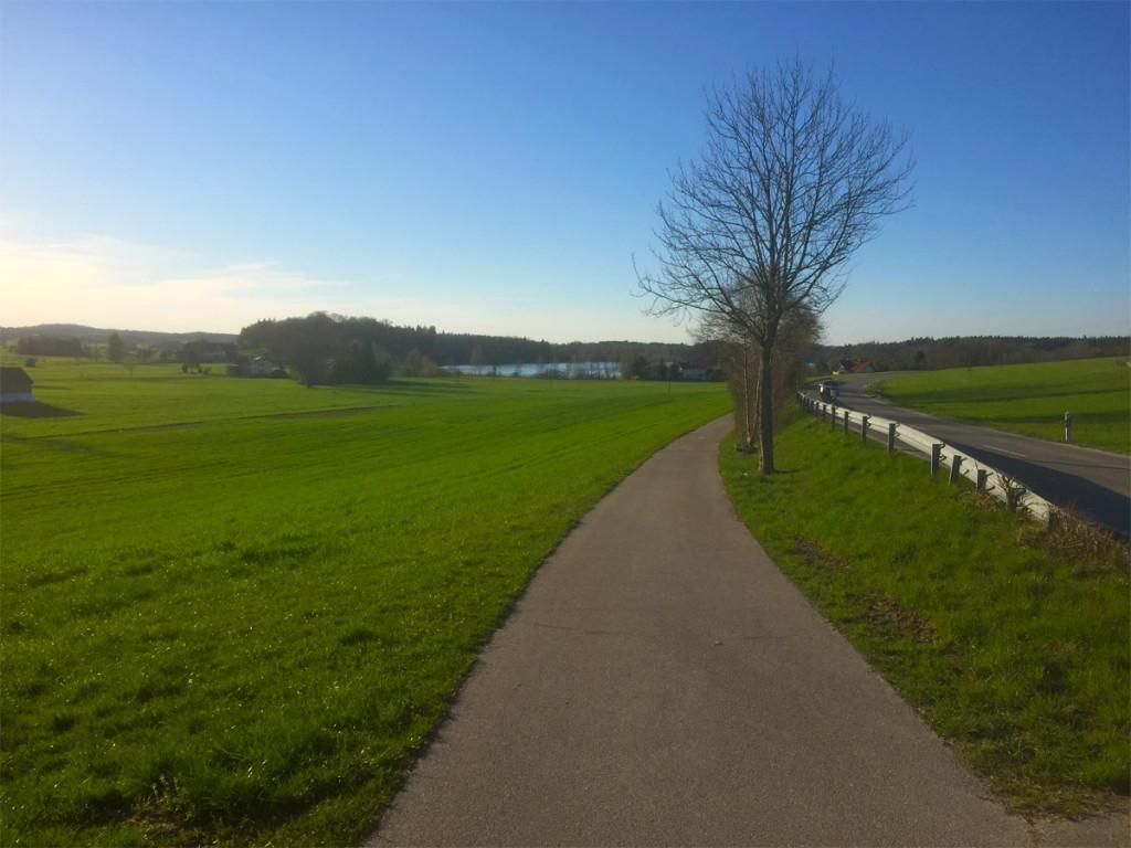 Radweg von Freilassing nach Laufen auf Höhe Abtsdorf