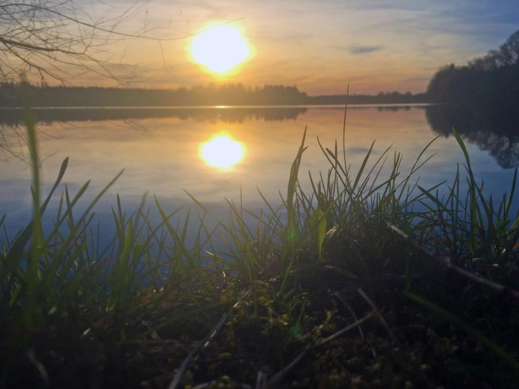 Sonnenuntergang am Ost-Ufer des Abtsdorfer Sees