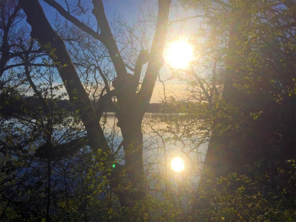 Spiegelung der Sonne aufgenommen vom Radweg
