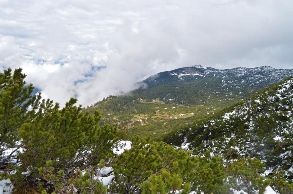 Blick über das Untersberg Plateau