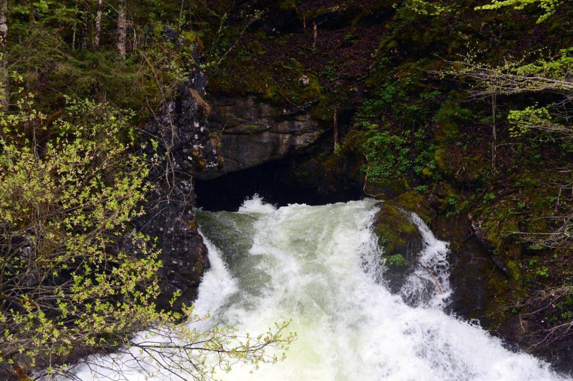 Das Schwarzbachloch: Die Quellhöhle des Schwarzbaches