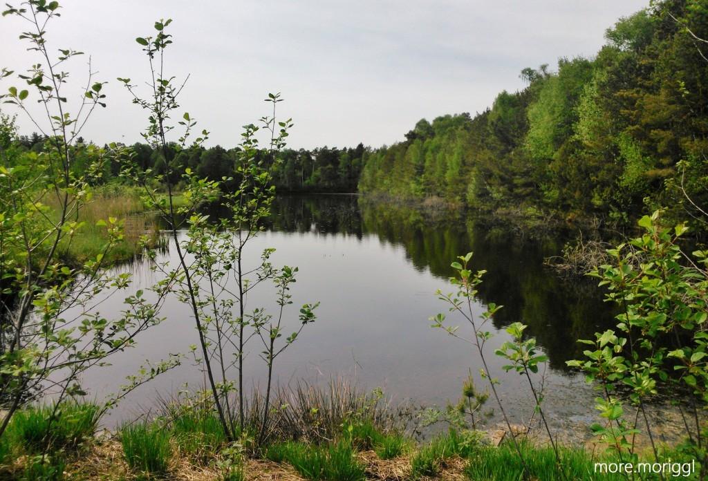 Ein hinteres Seebecken