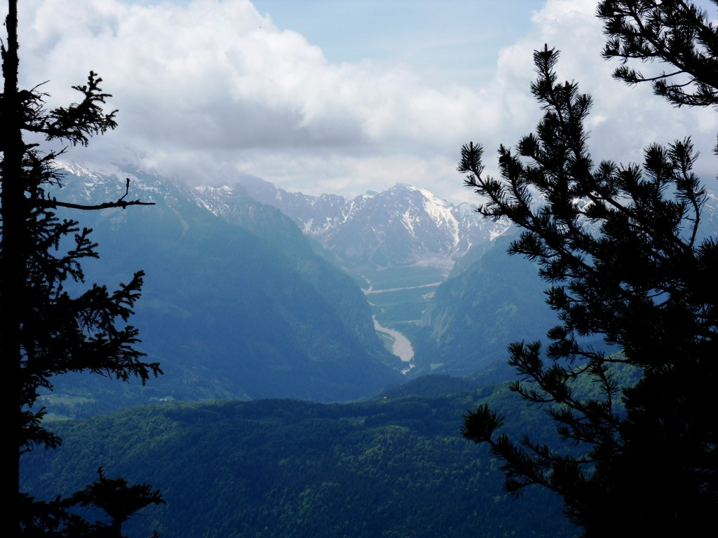 Ausblick ins Wimbachgries