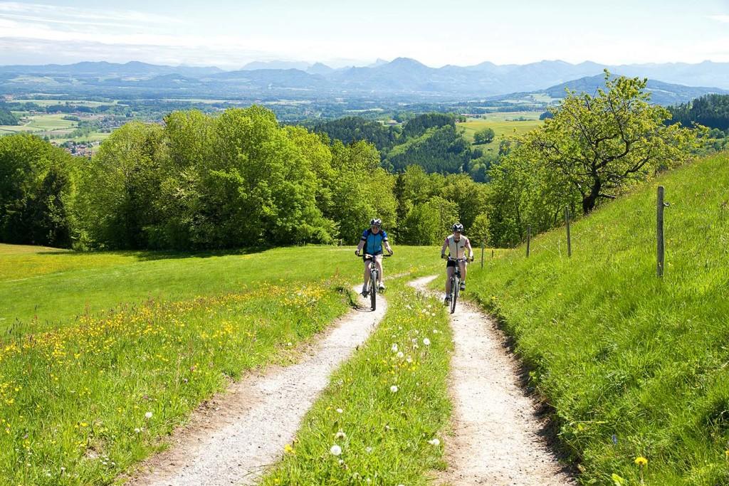 Mountainbiker auf dem Feldweg Richtung Hochhorn inmitten einer blühenden Wiese - im Panroama im Hintergund das weite Land des Rupertiwinkels mit den Bergen rund um Salzburg