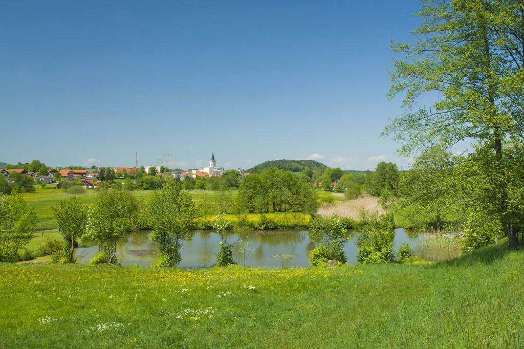 Blick über den Frühling am Pfarrer-Weiher hin zu Teisendorf  (c) roha-fotothek Fürmann