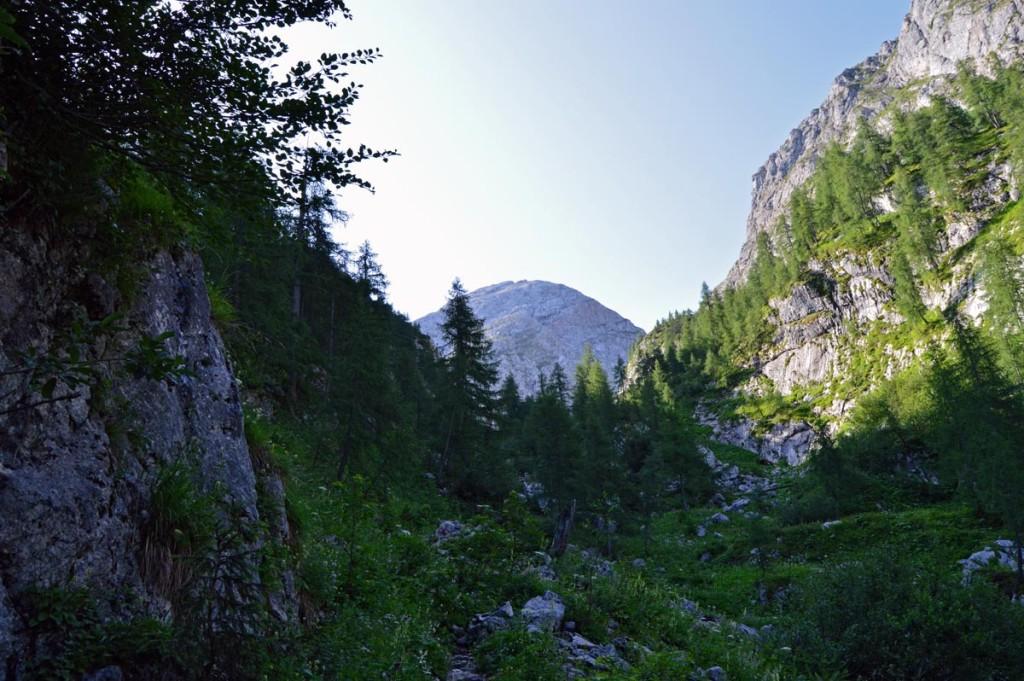 Durch den Stiergraben zum Kaherlsberg