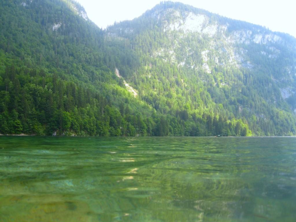 Badespaß im Königssee