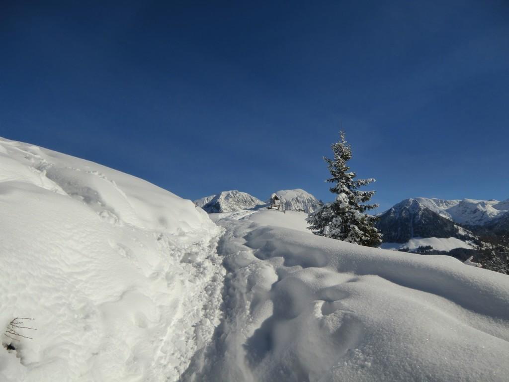 Gipfelweg zum Grünstein im Winter