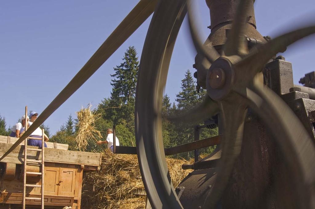 im Bauernhofmuseum Hof betreibt die Dampfmaschine den Dreschwagen zum traditionellen Dampfdreschen - Kirchanschöring