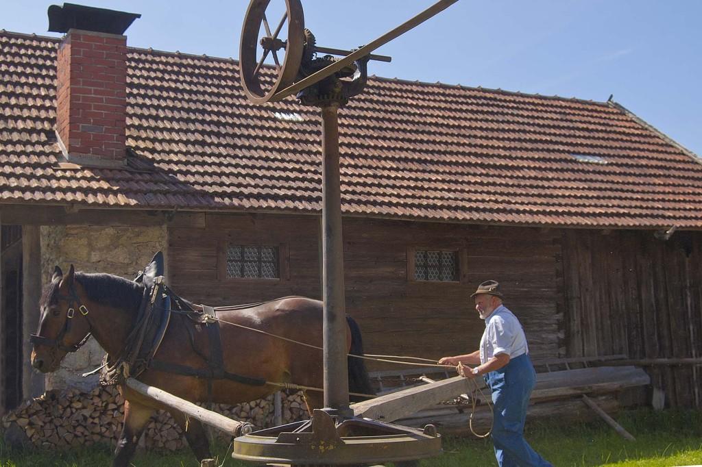 der Goepel im Bauernhofmuseum Hof, eine Transmission, mit der verschiedene landwirtschaftliche Geräte betreiben werden - Kirchanschöring