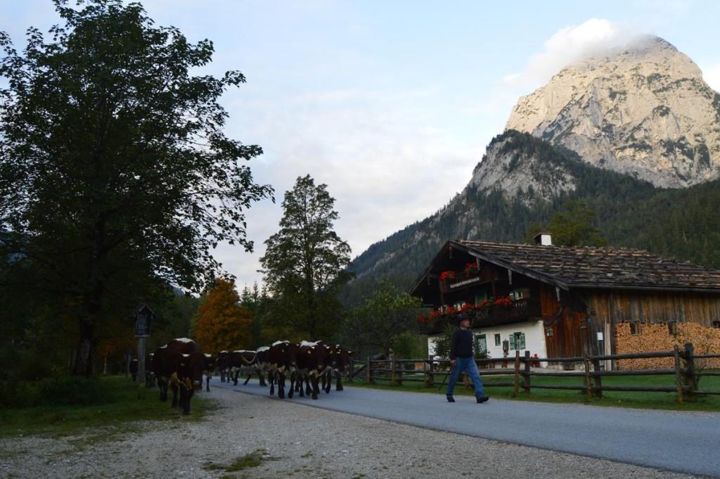 Das Klausbachhaus am Hintersee