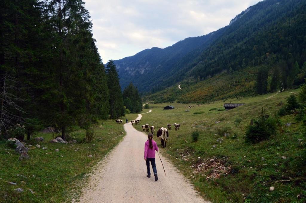 Ankunft auf der Schwarzbachalm