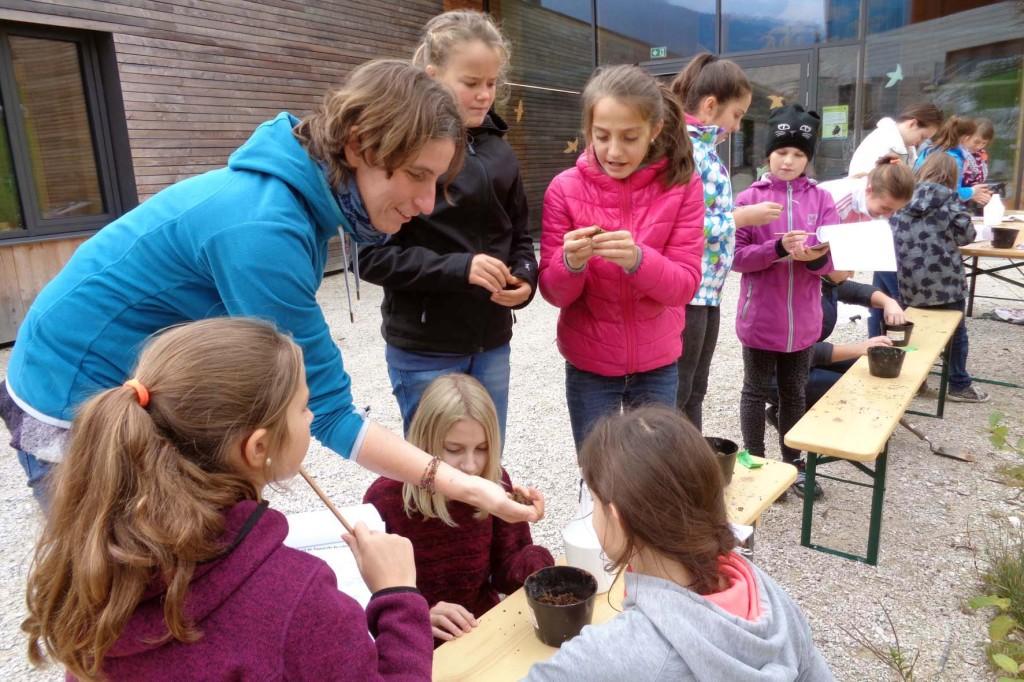 Sand? Schluff? Oder doch Ton? Schülerinnen und Schüler der Unterstufe des Gymnasiums Berchtesgaden untersuchten Bodenproben und lernten unter der Leitung von Nationalpark-Mitarbeiterin Michaela Mandlik (l.) verschiedene Bodenlebewesen kennen.