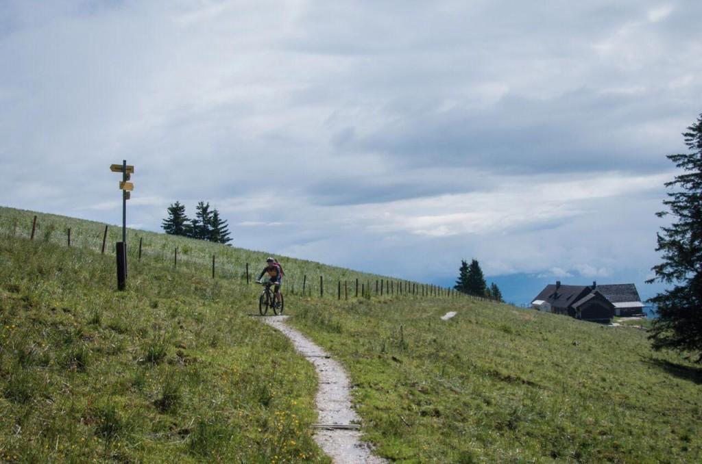Radler-Stoißer-Alm-Inzell-MTB-Challenge