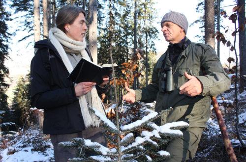 Sachgebietsleiterin Kathrin Rinneberg (l.) informiert sich oberhalb der Gemeinde Ramsau über die Fortschritte beim Waldumbau.