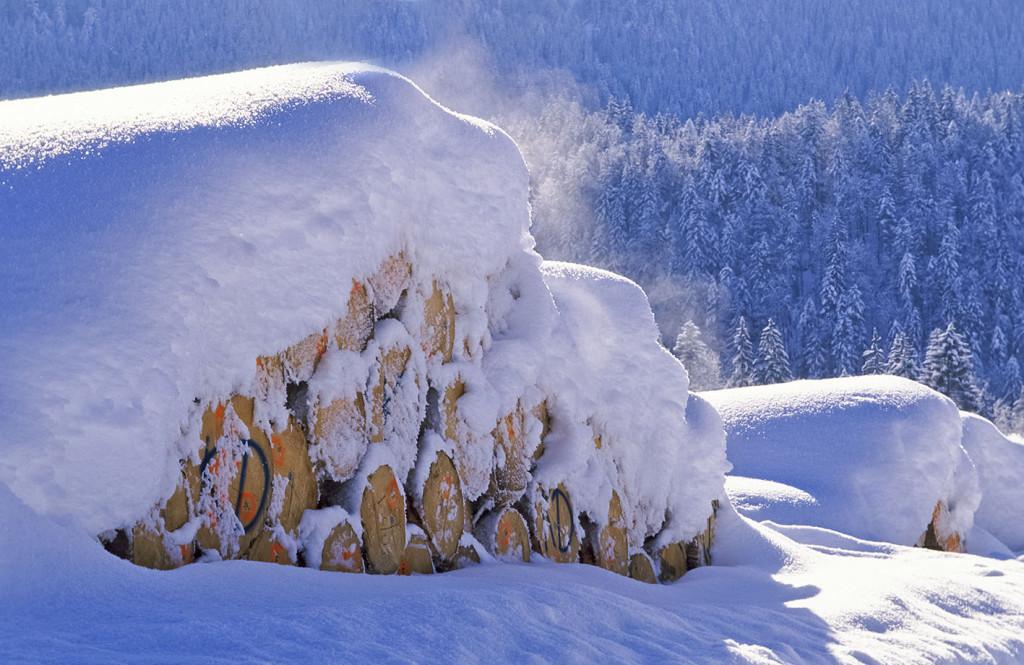 Holzganter mit Baumstämmen am Seegatterl, Gemeinde Reit im Winkl, Chiemgau, Oberbayern