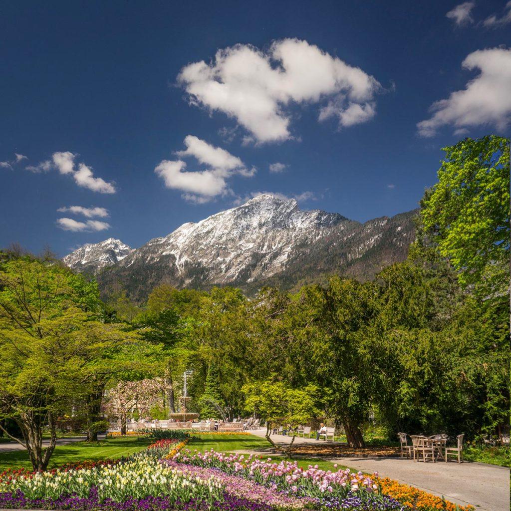 Frühling im Königlichen Kurgarten Bad Reichenhall