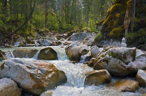 Wasser, Felsen, Wald: Der Zauberwald in Ramsau