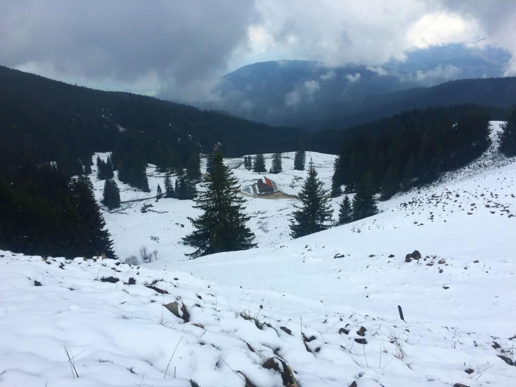Die Forststraße von Anger auf die Stoißer Alm ist ein echter Mountainbikeklassiker