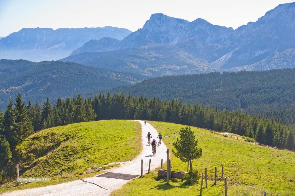 """Mountainbiker - die Stoißeralm auf dem Teisenberg (1334m) mit Hochstaufen und Zwiesel und Untersberg, Berchtesgaden Alpen (Bayern, Oberbayern, Berchtesgadener Land, Deutschland), ein """"Magnet"""" für Wanderer und Mountainbiker"""