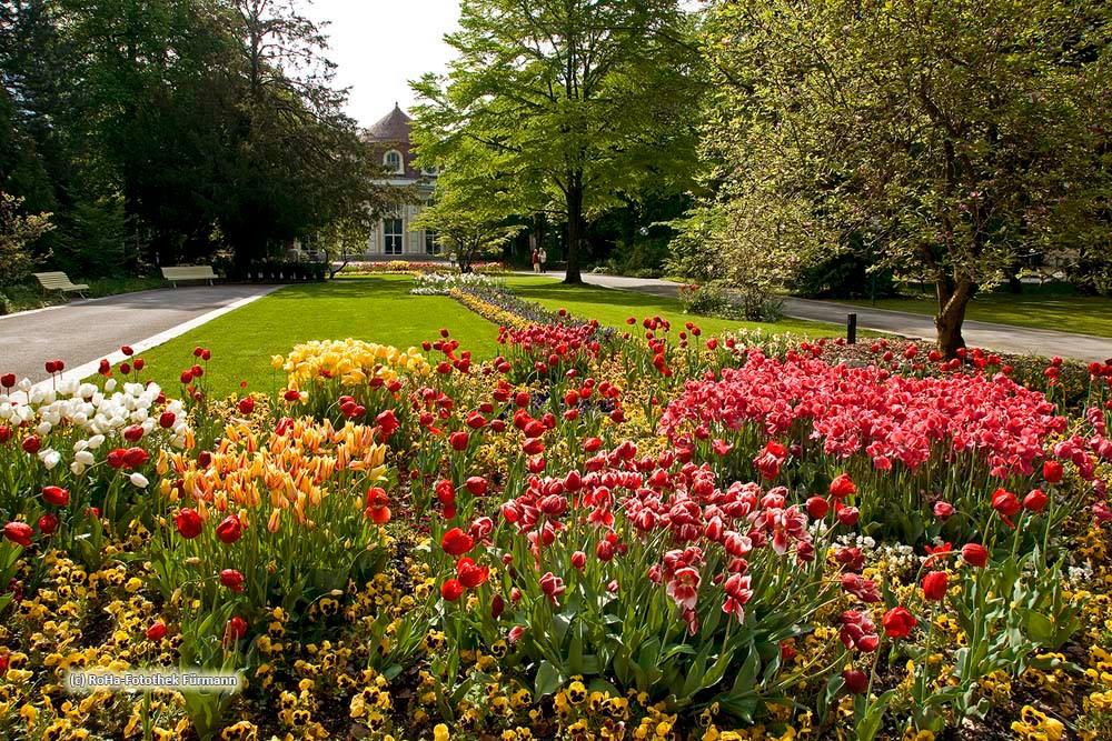 Tulpenblüte im Königlichen Kurgarten der Alpenstadt Bad Reichenhall © RoHa Fotothek Fürmann