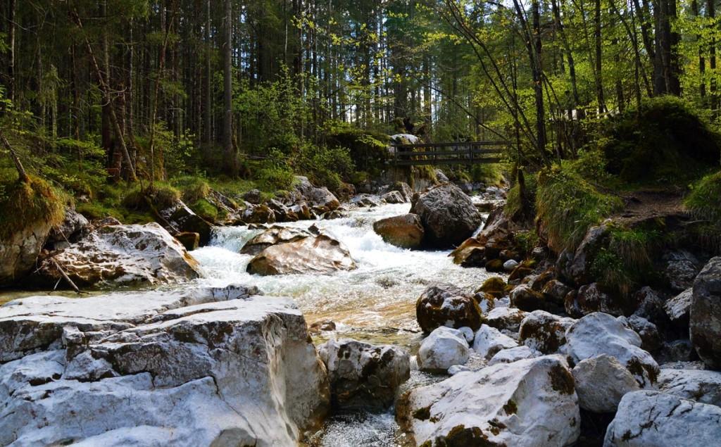 Der Zauberwald im Bergsteigerdorf Ramsau