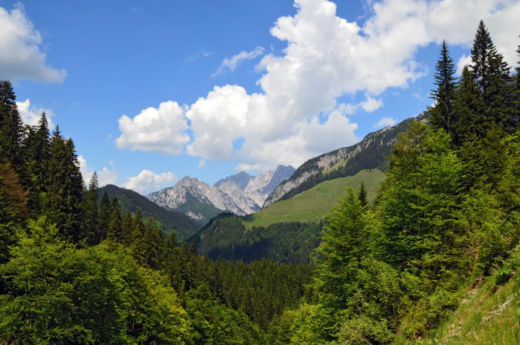 Blick zur Kammerlingalm vom Weg zur Kallbrunnalm