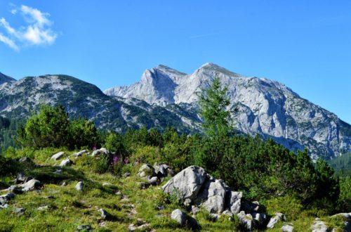 Einsame Pfade und Natur pur auf der Reiter Alm im Bergsteigerdorf Ramsau