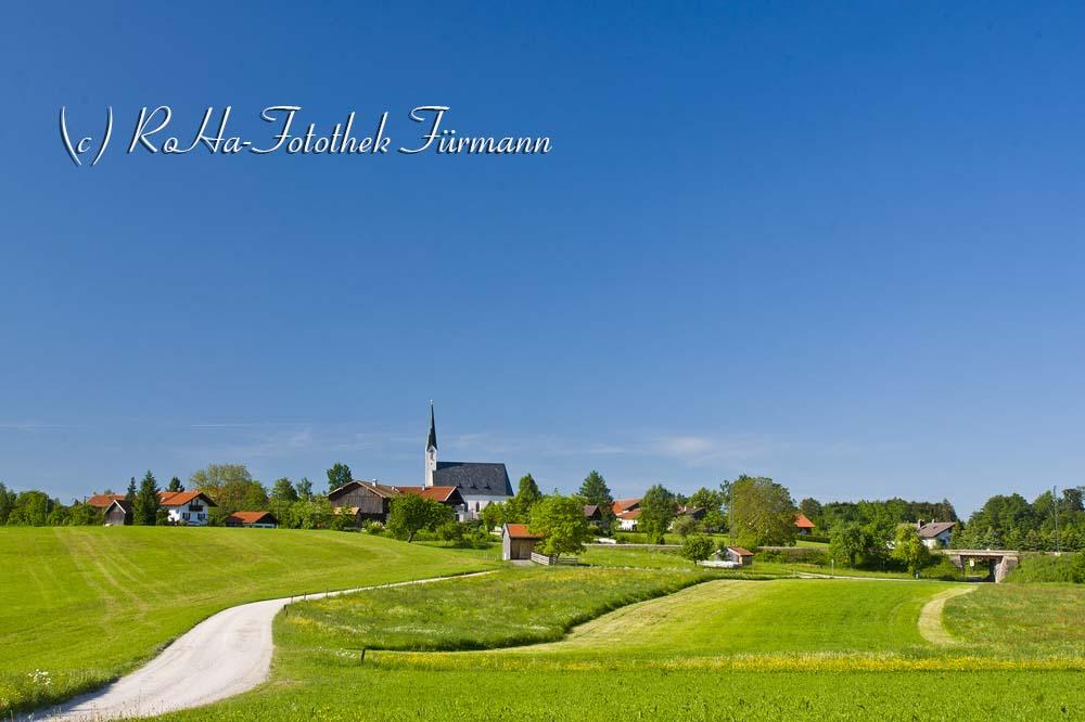 Mehring in der Gemeinde Teisendorf - landwirtschaftlich geprägte Landschaft, Berchtesgadener Land, Oberbayern, Deutschland